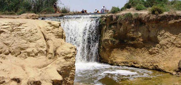 6 مستثمرين يقدمون عروضاً لإنشاء فنادق سياحية بمحمية الريان