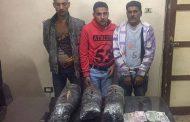القبض علي كوركور وآخرين بحوزتهم 10 كجم بانجو بالدقهلية