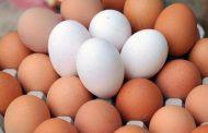 الفرق بين البيض البني والبيض الأبيض
