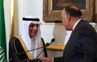 شكري: العلاقات مع السعودية مميزة ولا يوجد تقارب مع إيران