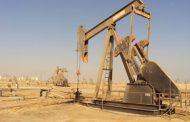 الجديد في أسعار النفط  اليوم السبت 14-1-2017...