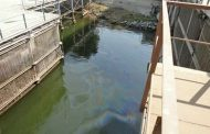 بالصور : مياه شرب  الاقصر مخلوطه بالسولار وبدء قطع المياة عن مدينة الأقصر