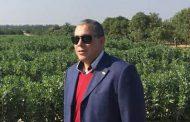 رسالة استنكار الجالية المصرية بفرنسا