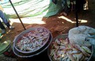 ضبط ٣٠٠ كيلو أسماك متعفنة بسوق الاربعاء بمدينة فايد بالإسماعيلية .