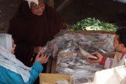 عاجل : التحفظ على أسماك غير صالحة للاستهلاك الآدمى فى حملة تموينية بالإسكندرية