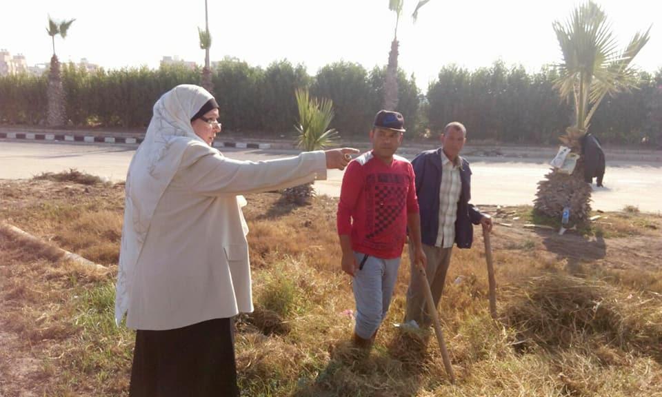 بالصور... رئيس مدينة جمصة تشرف علي تطوير الحدائق والميادين