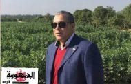 حملة ولادك فى الخارج سندك يامصر لدعم الرئيس السيسي