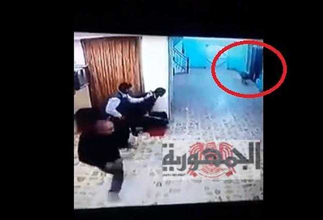 شاهد بالفيديو.. 'ضبع' مفترس يقتحم مستشفى ولادة  ويثير الرعب!