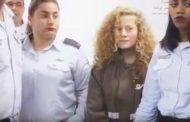 بالفيديو :أغنية الطفلة الفلسطينية الأسيرة عهد التميمي ....