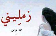 محمد عباس يكتب : زمليني