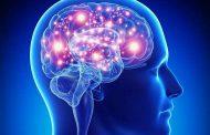 معلومات رهيبة حول الدماغ البشري