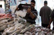 بتكلفة 23 مليون جنيه وعلى مساحة 7200 م سوق جديد لبيع الأسماك بالإسماعيلية .