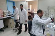 نجاح حملات فيرس c فى  محافظة الغربية
