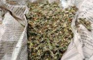 ضبط عاطل وبحوزته 1 كجم من نبات البانجو المخدر بالملاك ابوحماد - شرقية