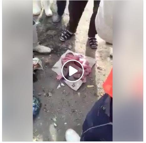 شاهد بالفيديو .. تفاصيل العثور علة توام بالقمامة