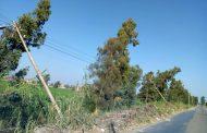 بالصور .. كابوس اعمدة كهرباء الزرقا - دمياط .. خطر الموت يحيط بالمواطنيين