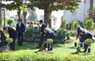 الرئيس السيسى وزعيما قبرص اليونان يغرسون أشجار الزيتون بـ