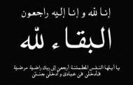 الاعلامية دينا الطواب  تنعي وفاة نجل الكاتب الصحفى الكبير سيد جاد