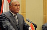 شكري:مصر لها قدرة وتاريخ مع العمل مع الدول الافريقية