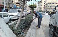 الاهتمام بالمظهر العام والجمالي بالمنتزه ثان-اسكندرية